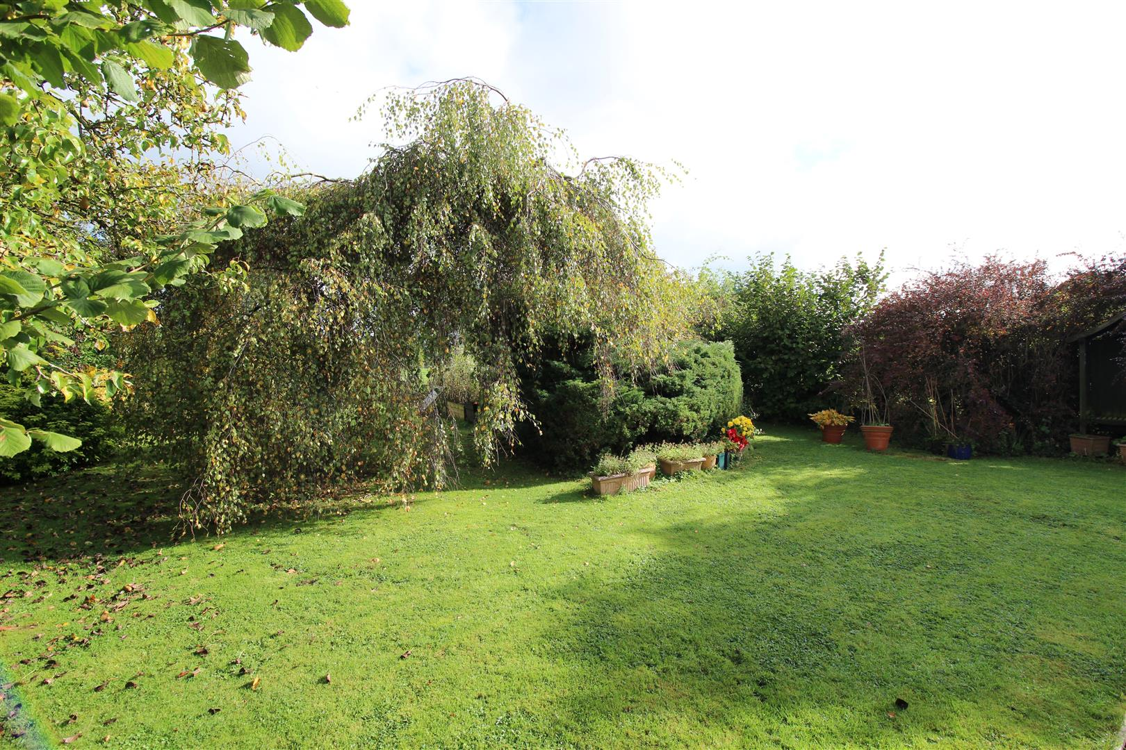 4 Bedrooms Bungalow for sale in East Tytherton